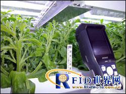 富士通为Akisai农业云添加RFID解决方案