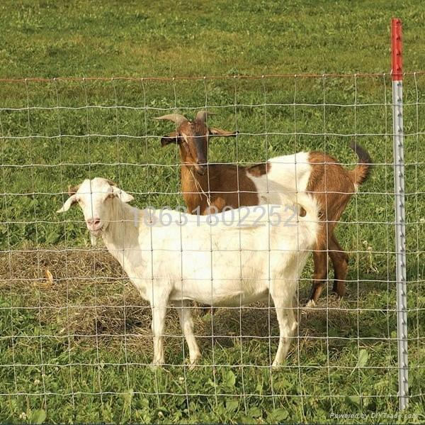 探感物联牛养殖、羊养殖RFID出入栏统计