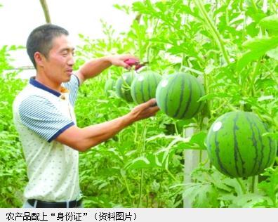 """扬州农产品将升级配上NFC标签 手机一""""照""""辨真伪"""
