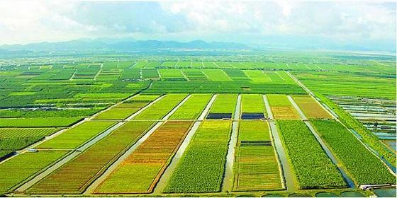 大田环境监控设施是农业物联网技术的重要体现