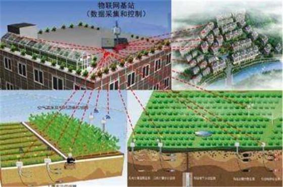 农业物联网是现代农业发展的必经之路