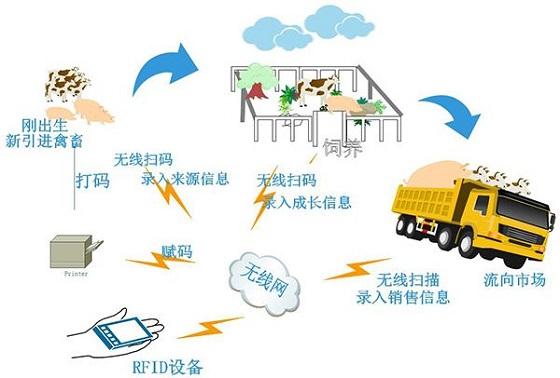 RFID在现代化奶牛场中的应用案例分析