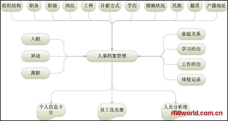 人事管理系统